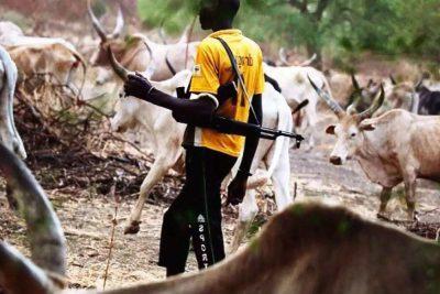 'Killer herdsmen' invade Kaduna village, kill four