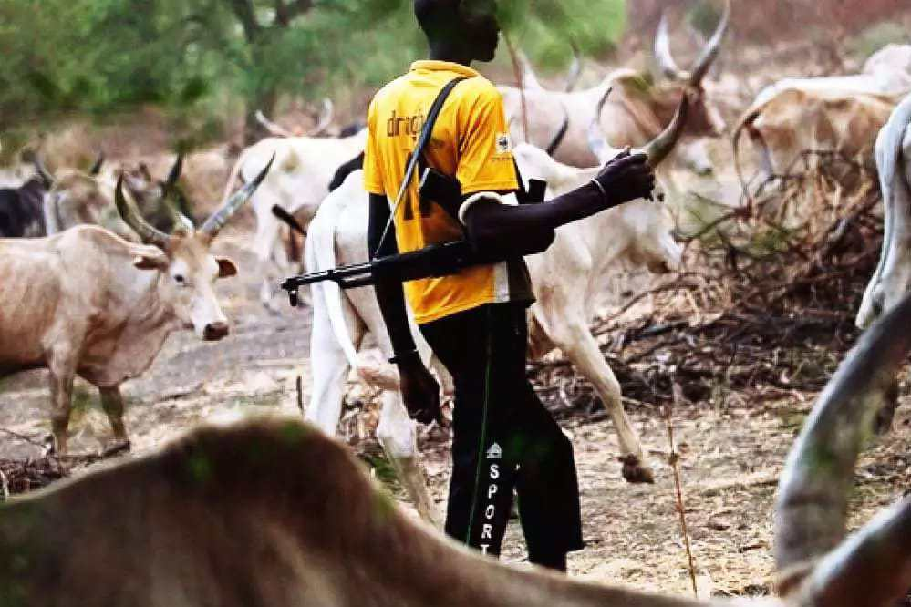 No To Cattle Colonies By Femi Falana