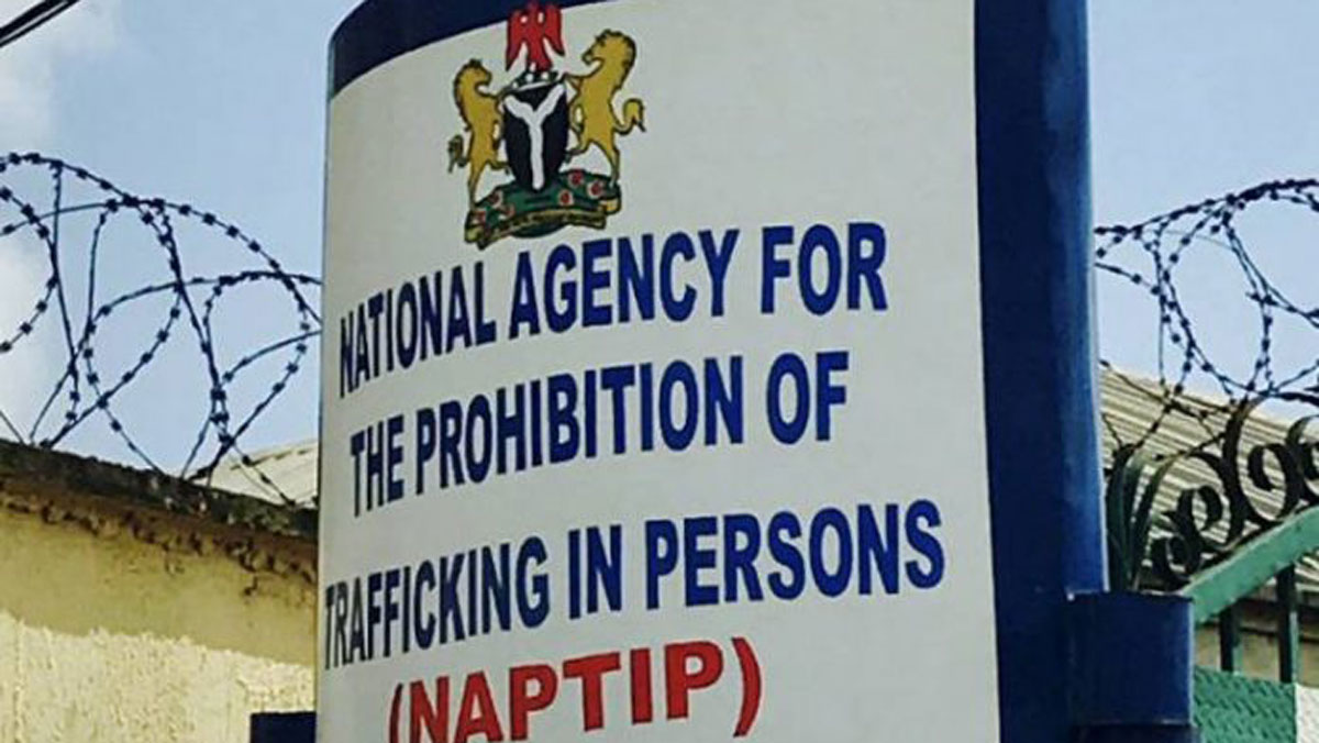 NAPTIP: Herbalist arrested for sales of babies in Abuja