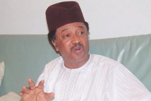 You must vote out APC! Shehu Sani charges Nigerians