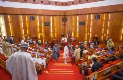 Senate condemns alleged herdsmen attacks on farming communities