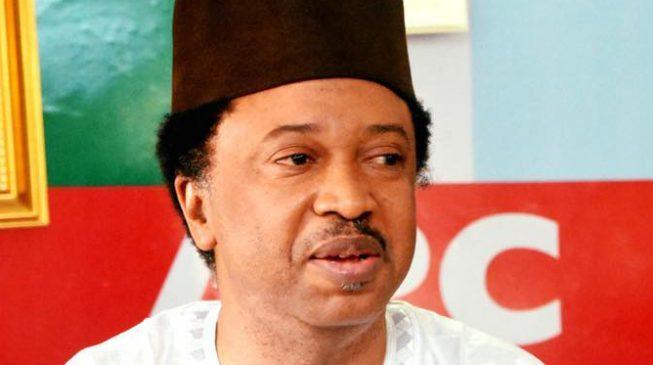 APC suspends Senator Shehu Sani indefinitely
