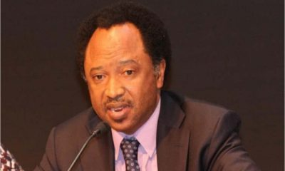 Publish your shareholders now, Shehu Sani dares Keystone Bank, Etisalat