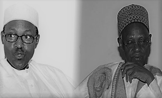 Shagari: Buhari not in position to mourn former president – Junaid Mohammed
