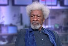 Soyinka declares 2019 election most depressing, admits his generation failed Nigeria/newsheadline247