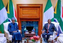 Nigeria, South Africa to issue 10-year visa to businessmen, academics/newsheadline247