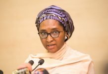Finance Minister: Fuel subsidy to gulp N450bn in 2020/newsheadline247