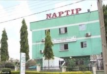 newsheadline247.com/NAPTIP opens register for all sex offenders in Nigeria