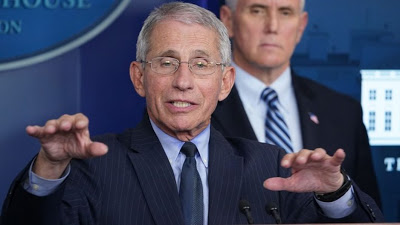 Anthony Fauci-newsheadline247.com