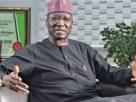 Mustapha deserves commendation, not condemnation