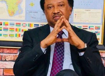 Buhari has failed Nigerians woefully, Jonathan govt a total disaster – Shehu Sani - newsheadline247.com