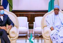 AFDB President Adesina meets Buhari in Abuja - newsheadline247.com